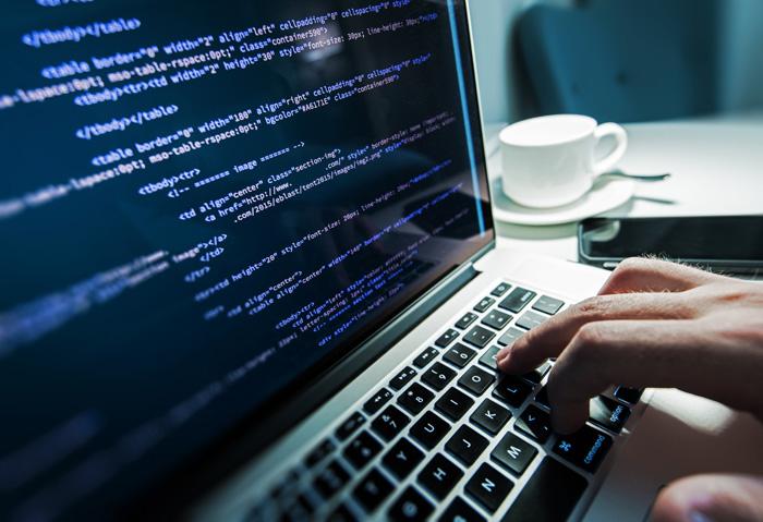 Web Application / Software Development